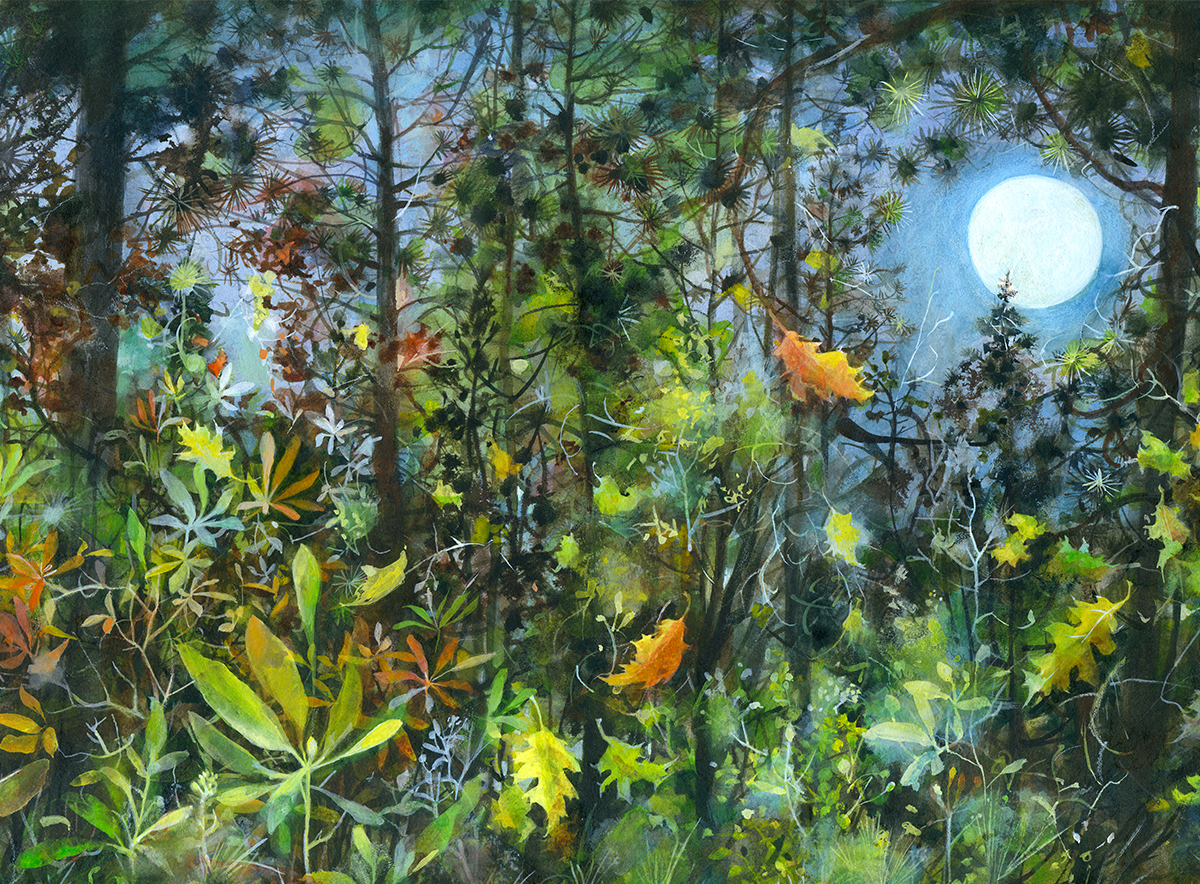 In Forests No. 46   October Moon by Andie Thrams